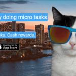 Curious Cat survey app