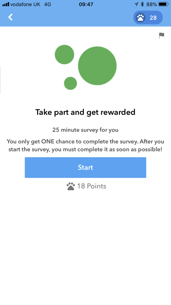 how much a curious cat survey pays