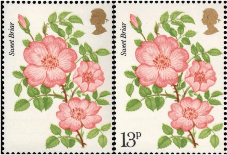 The Roses Error Stamp